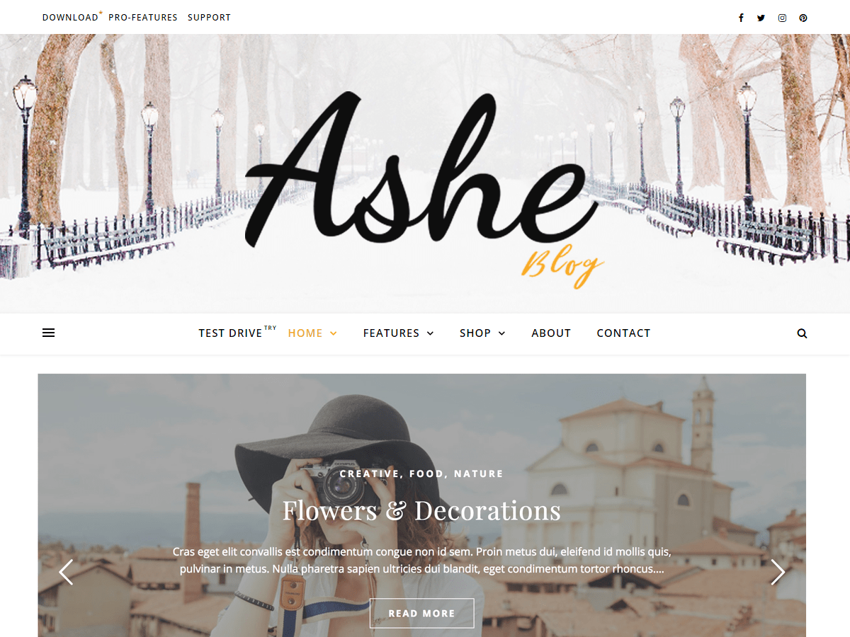 ashe-best-blog-theme