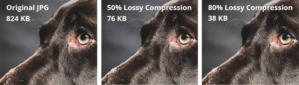 Compress Images for Faster Loading